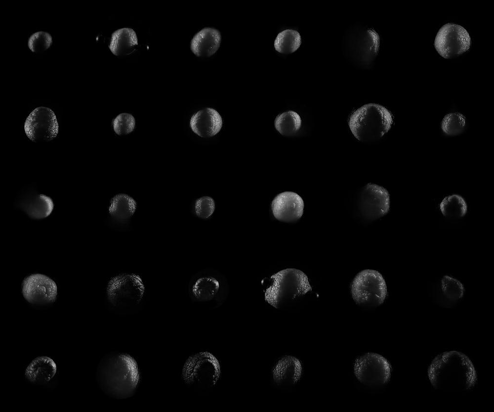 Terra-Nudum-2018-10-12-scene-11-A1